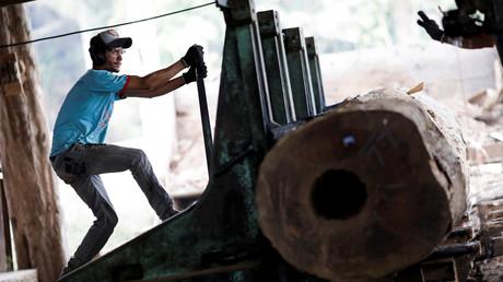Abholzung in Amazonien nimmt während Corona-Krise enorm zu. Auf dem Archivbild: Ein Sägewerksarbeiter bearbeitet einen Baum aus dem Amazonas-Regenwald, 19. August 2019