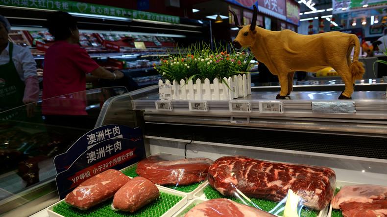 Canberra fordert Corona-Untersuchung – Peking stellt Rindfleischimporte aus Australien ein