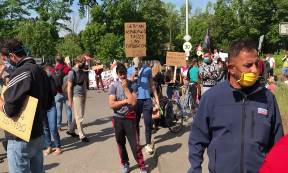 Spargelernte: Hilfsarbeiter protestieren wegen nicht gezahlter Löhne und katastrophaler Zustände