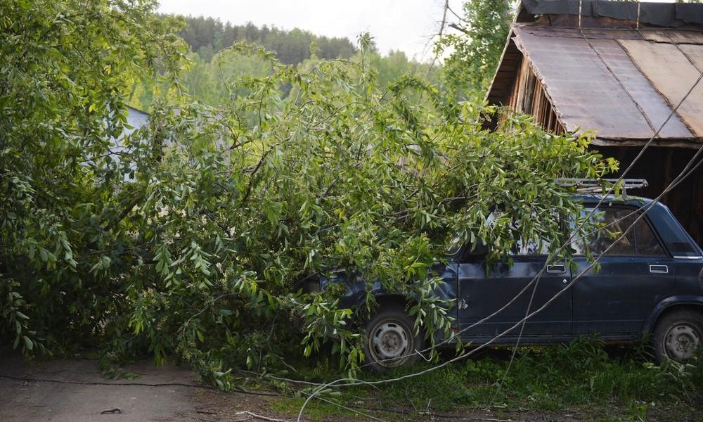 Drei Tote nach Orkan in russischer Stadt Jekaterinburg