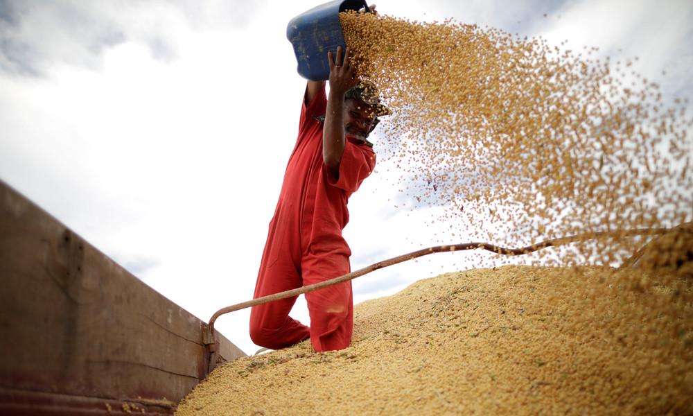 Wachsender Zwiespalt wegen Hongkong: China stoppt Import diverser Agrarprodukte aus den USA