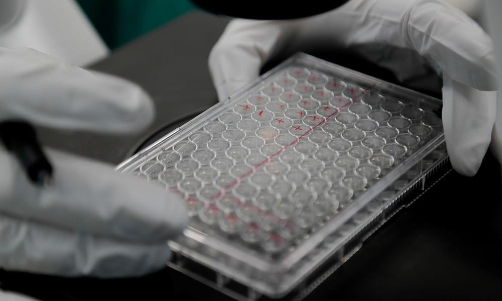 Ohne USA: Europäische Länder sehen in Washington keinen Partner bei Impfstoffentwicklung
