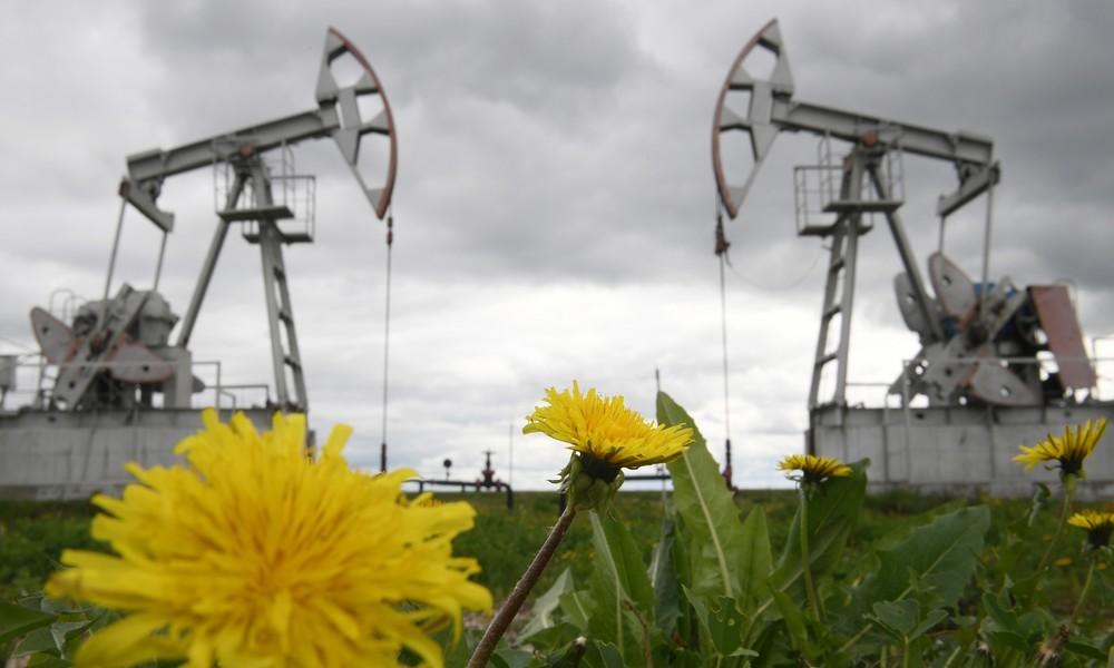 Russischer Energieminister: Corona-Krise wird Abkehr von Kohlenwasserstoffen beschleunigen