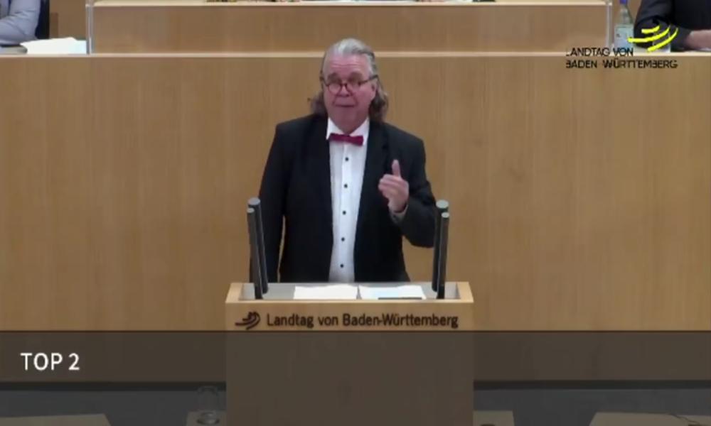 """Ex-AfDler fliegt wegen Wutrede über """"von Ausländern dominierte Mobs"""" in Stuttgart aus Landtag"""