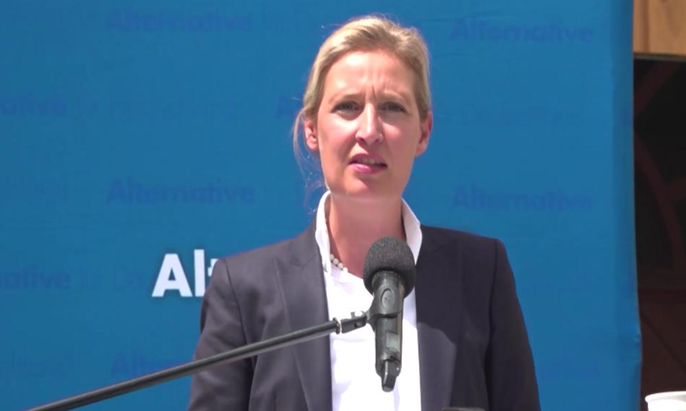 """AfD-Fraktionschefin Weidel nennt Stuttgarter Krawallnacht """"Probe für Bürgerkrieg"""""""