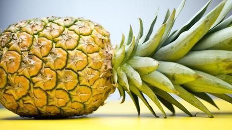 Polen: Grenzschützer stellen drei Tonnen Kokain in Ananas-Fruchtmark sicher. (Symbolbild)
