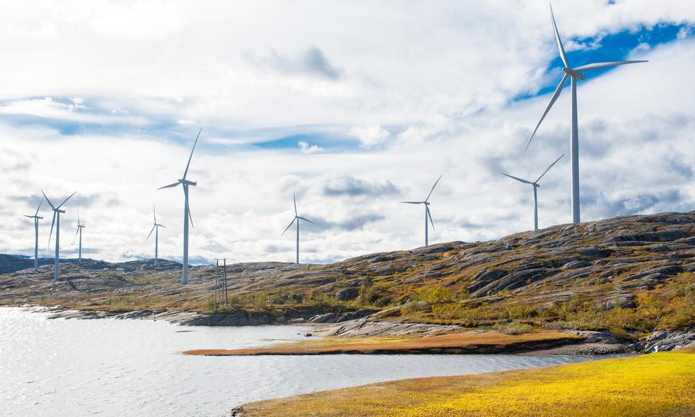 """Grüner Energie sind ″Menschenrechte"""" egal (Video)"""