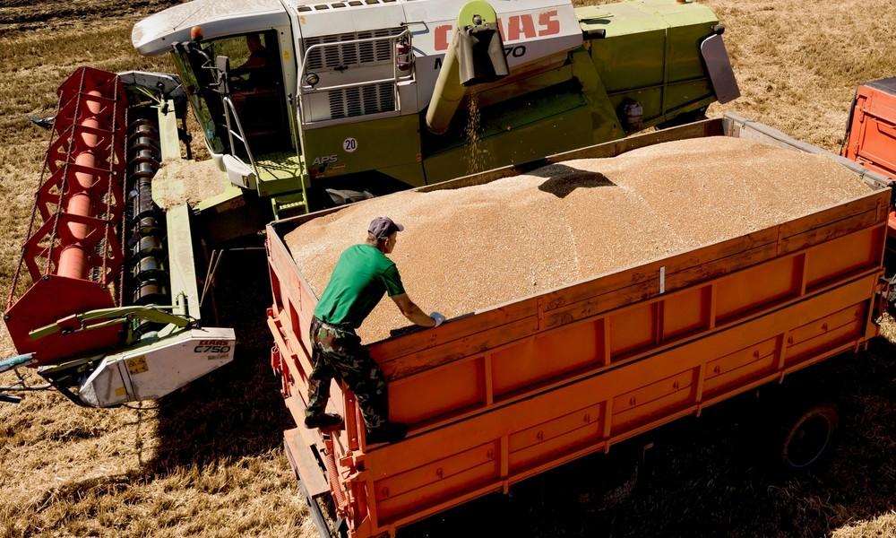 Russland trotz Corona-Krise noch immer weltweit führender Getreideexporteur