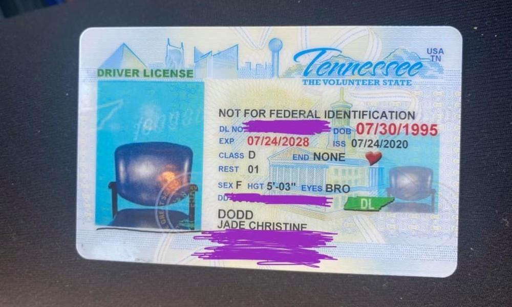 Vom Stuhl gefallen: Frau findet sich nicht auf Führerscheinfoto – US-Behörde findet Erklärung