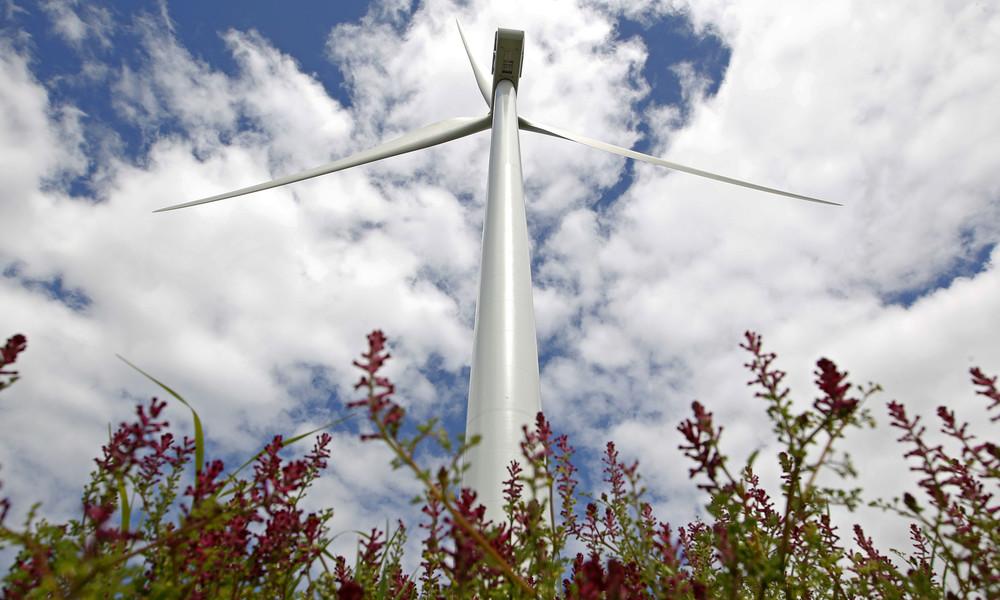 Erneuerbare Energien: Washingtons Abhängigkeit von Mineralien aus China