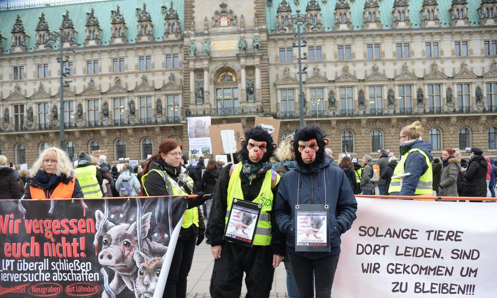 Trotz großer Proteste nach Betrug und Tierquälerei: Skandal-Labor LPT darf wieder an Tieren forschen
