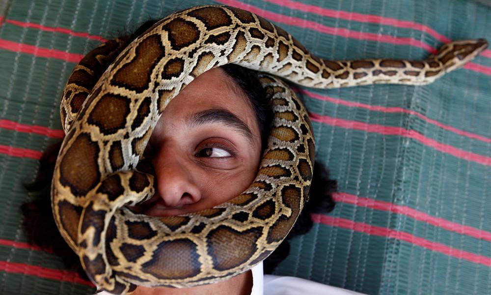 Maskenpflicht macht erfinderisch: Mann benutzt Schlange als Mundschutz