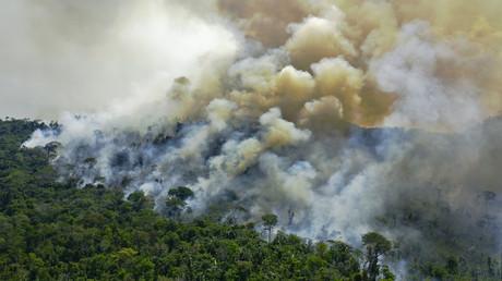 Brasilien: Tag des Amazonas-Regenwaldes wird von andauernden Bränden überschattet (Archivbild)