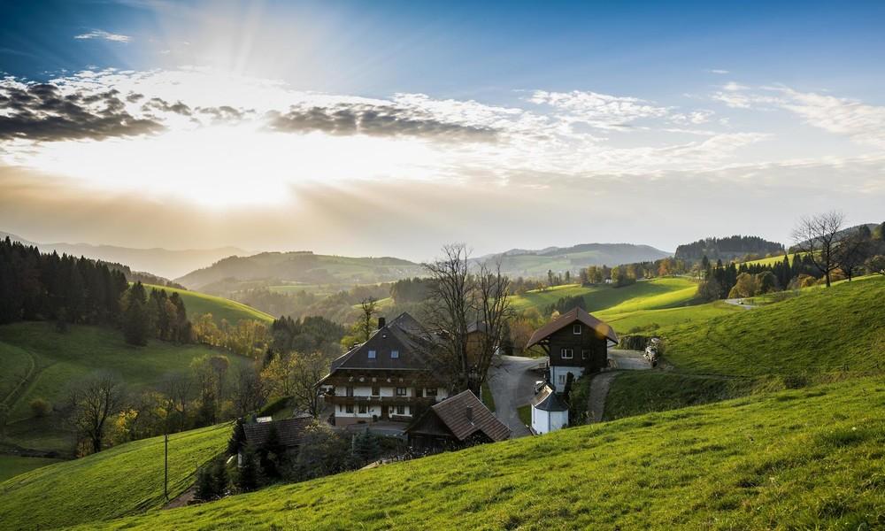 Zur optimalen Erholung: Nawalny bezieht Luxus-Ferienwohnung im Schwarzwald