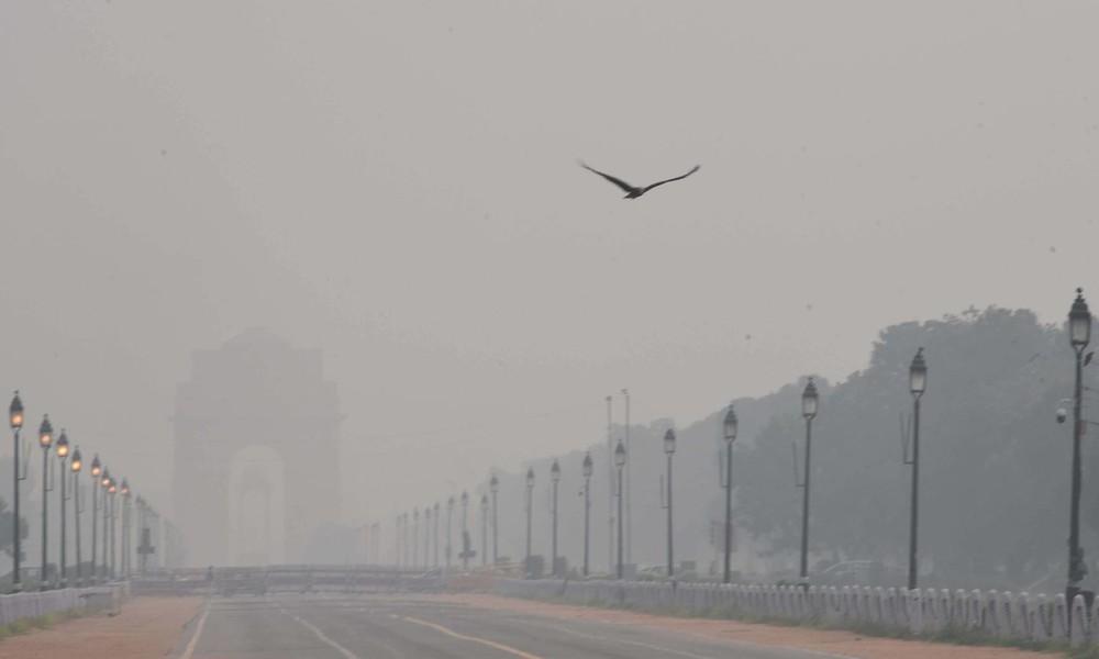 Studie: 2019 beinahe eine halbe Million Säuglinge an Luftverschmutzung gestorben