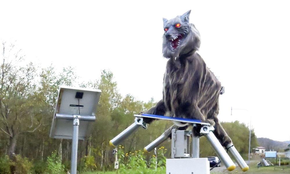 Alte Idee in neuer Form: Roboter-Wölfe gegen Bärenangriffe in Japan