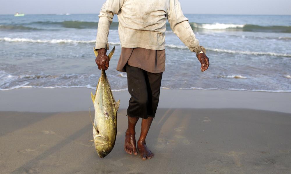 Nach Corona-Ausbruch auf Fischmarkt: Sri-lankischer Politiker isst bei Pressekonferenz rohen Fisch