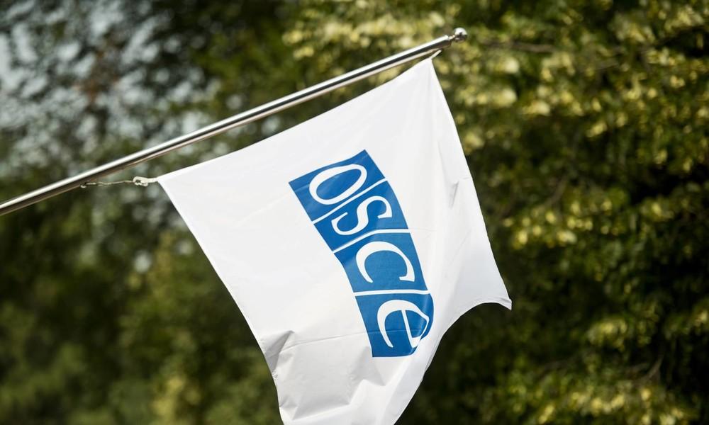 OSZE will angeblich Bundeswehr-Drohnen für die Ukraine