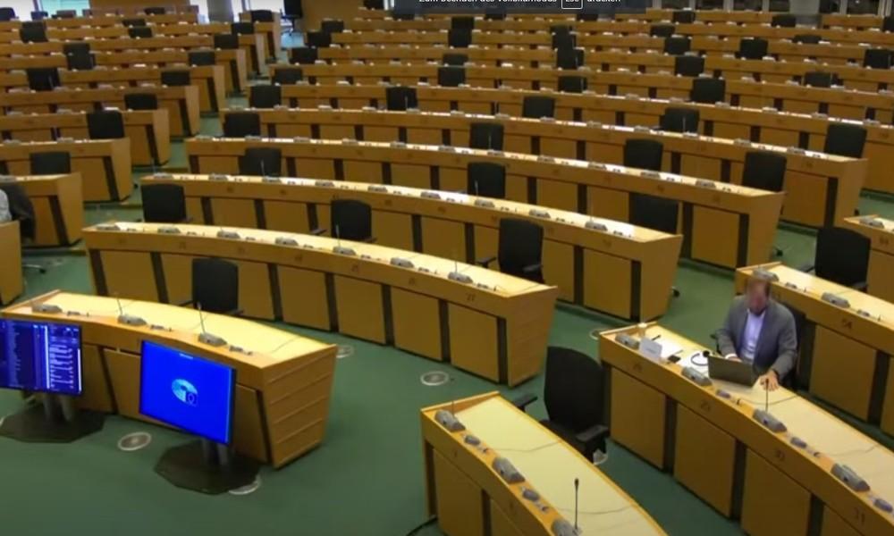 """Don Quijote im EU-Parlament: Viel Spekulation, aber keine Fakten zur """"russischen Einflussnahme"""""""