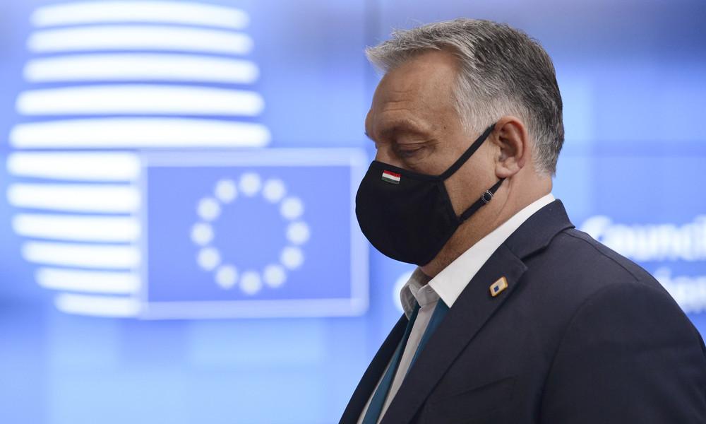 Sex-Party in Brüssel:  Organisator sprach mit Medien – Orbán kritisiert seinen EU-Abgeordneten