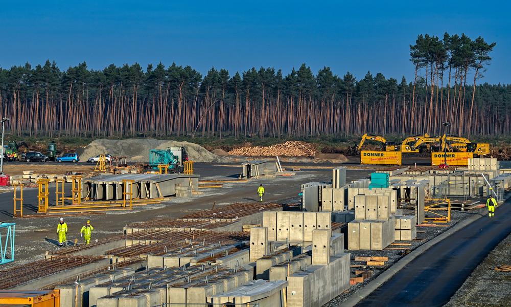 Gigafactory in Grünheide: Tesla darf auf der Fabrikbaustelle vorerst nicht weiter roden