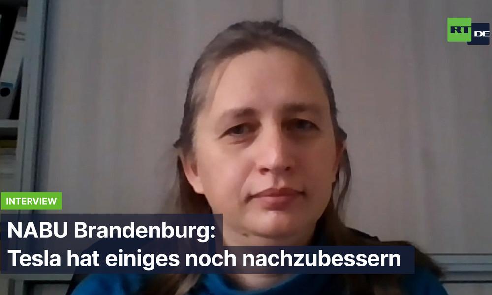 """Naturschutzbund Brandenburg: """"Tesla wird Tiere in größerer Zahl töten"""""""