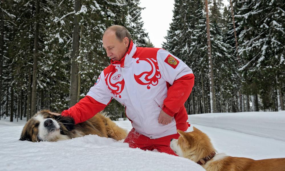 Harte Linie gegen Moskau nach Hackerangriff? – Warum Biden sich an Putin die Zähne ausbeißen könnte