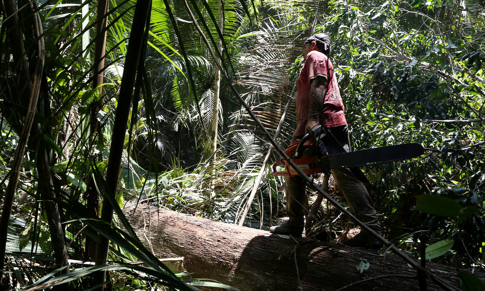 Peru: Deutschland investiert 20 Millionen Euro in Amazonas-Schutzgebiete