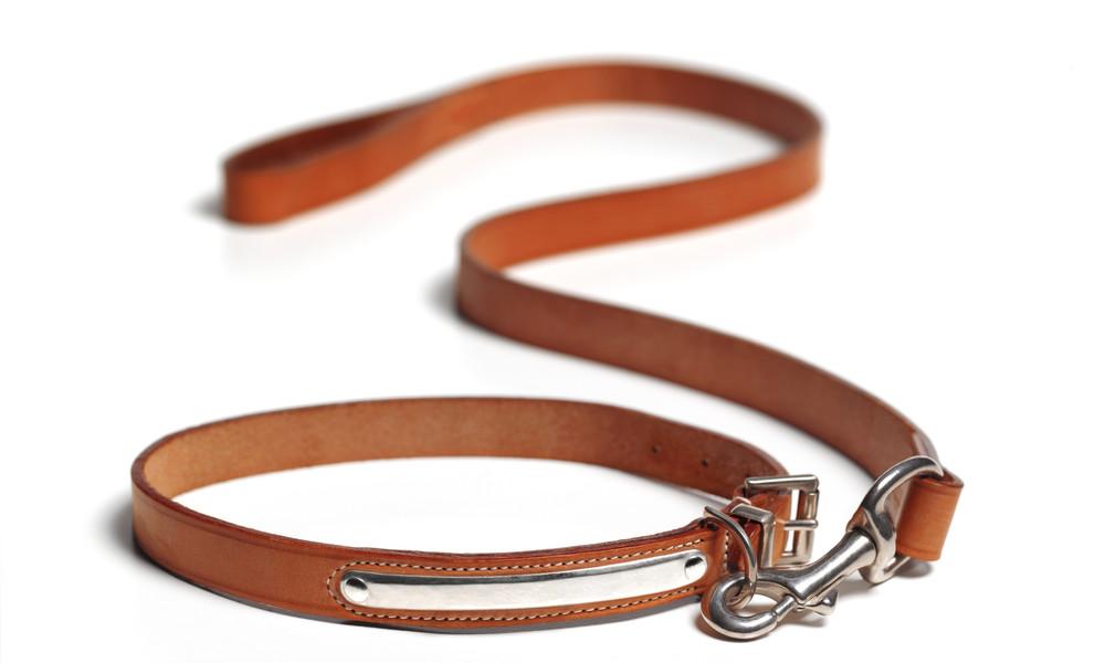 Wie Hunde: Konzern will zunächst in Frankreich Mitarbeiter-Halsbänder für Corona-Distanzschutz