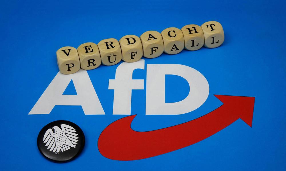 Verdachtsfallprüfung: AfD bald unter Beobachtung?