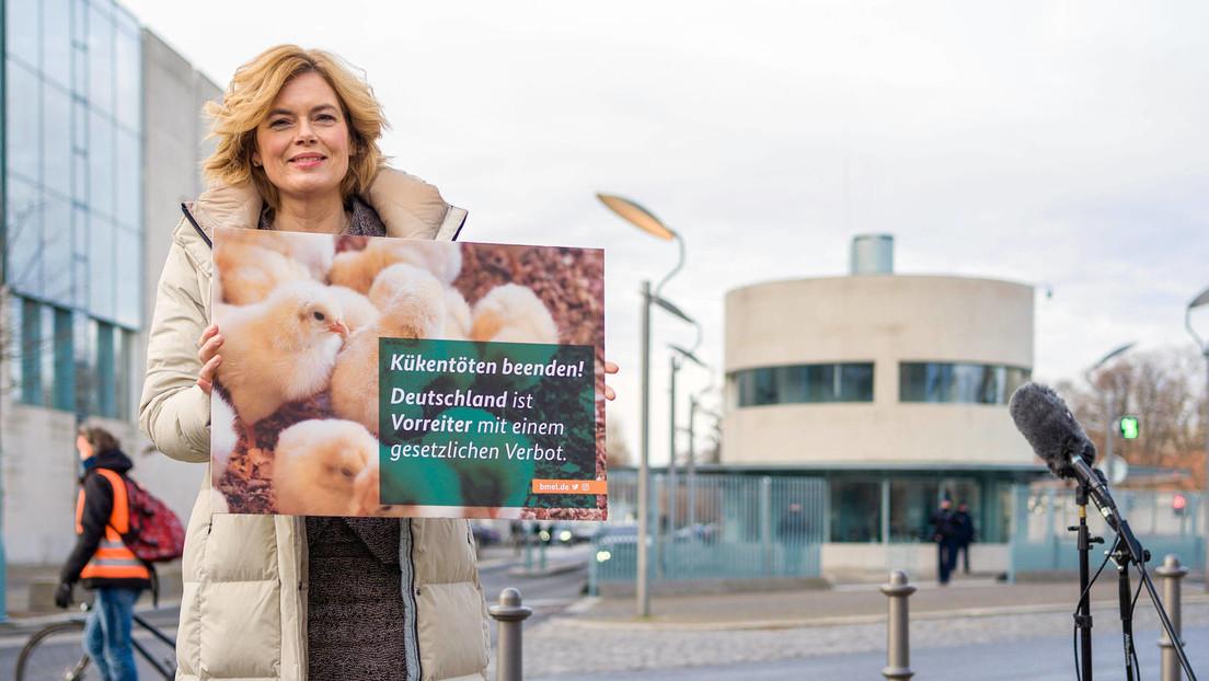 Tierwohl als Phrase: Wie Julia Klöckner die Öffentlichkeit blendet – und die Tagesschau mitmacht