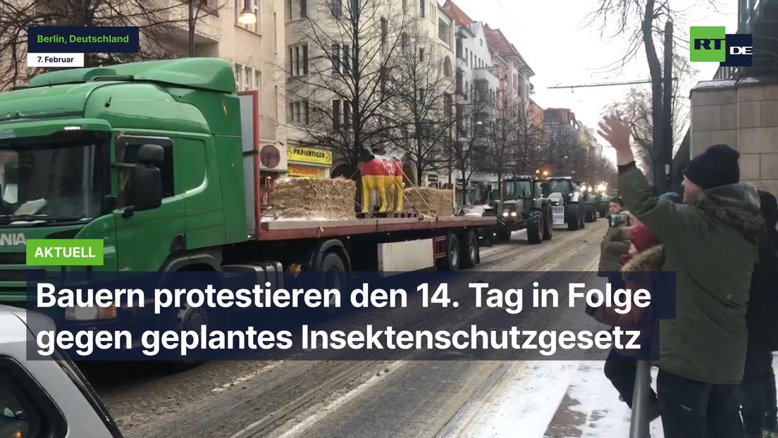 Bauern protestieren den 14. Tag in Folge gegen geplantes Insektenschutzgesetz