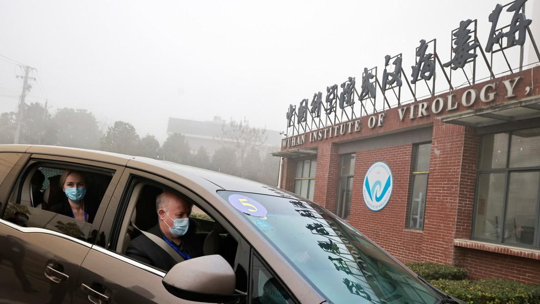 Wuhan-Mission zum SARS-CoV-2-Ursprung: Kritik von WHO-Wissenschaftlern an New York Times