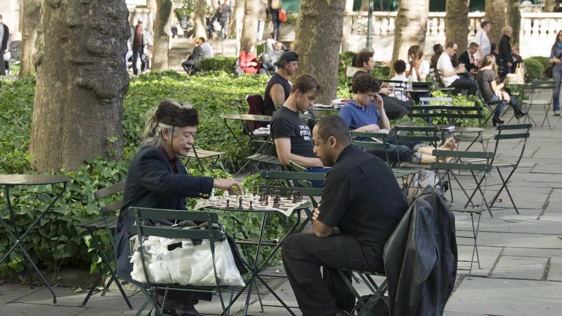Wien: 90 Euro Strafe für eine Schachpartie im Park – trotz Maske
