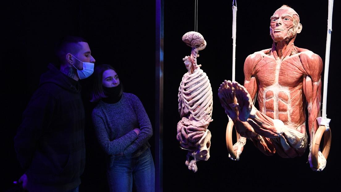 "Russland: Kritik an Leichenschau ""Körperwelten"" – Forderung nach Verbot"