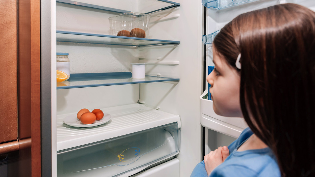 Wissenschaftlicher Beirat des Ernährungsministeriums: Mit Hartz IV keine gesunde Ernährung möglich