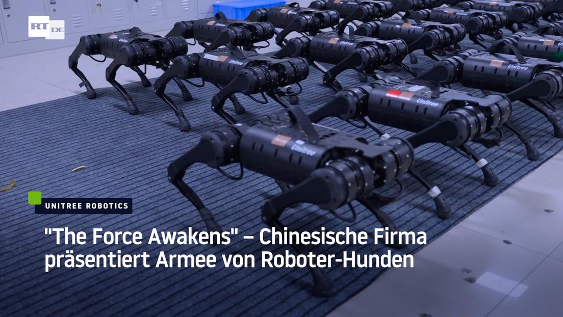 """""""The Force Awakens"""" – Chinesische Firma veröffentlicht Roboter-Hund-Armee Video"""