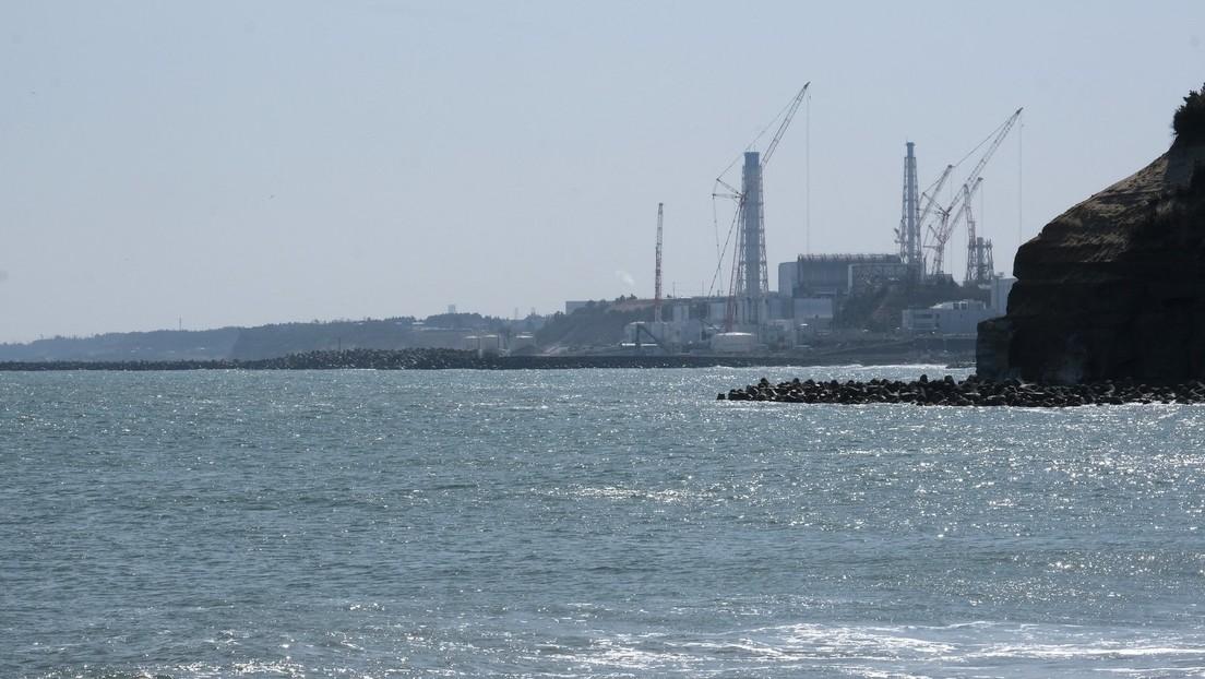 Russische Umweltschützer besorgt über Japans Pläne, Wasser aus AKW Fukushima ins Meer abzulassen