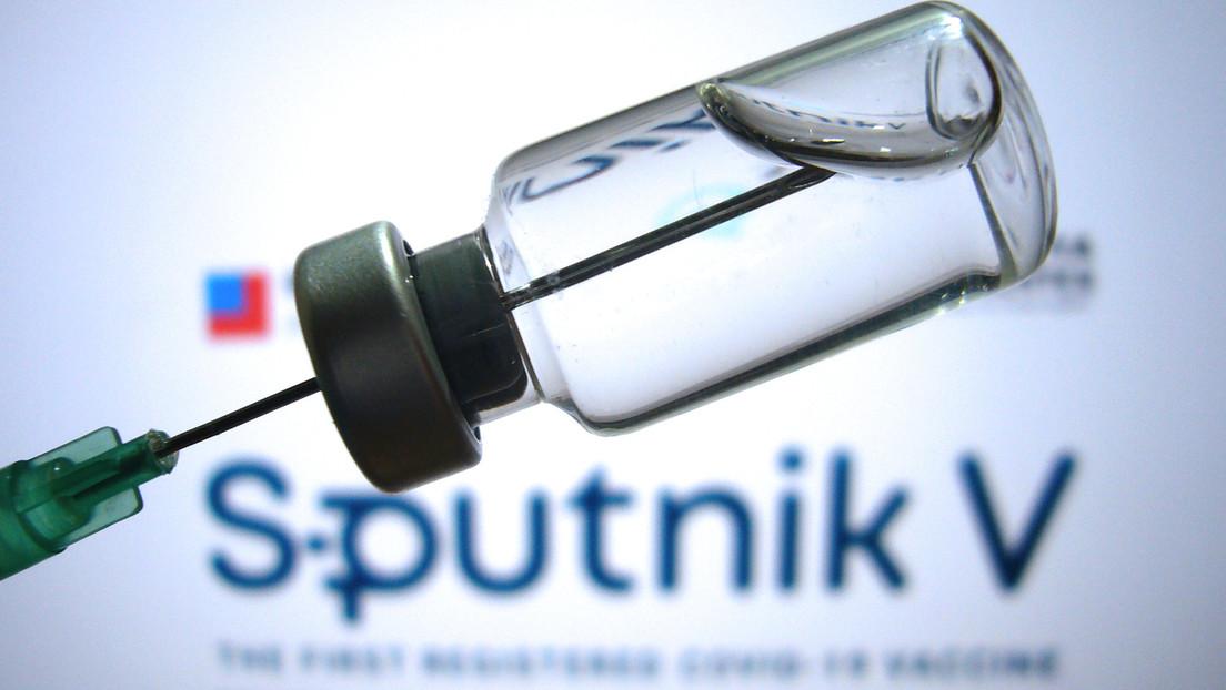 Grüne blockieren wegen Nawalny: Berlin startet keine Verhandlungen über Kauf von Sputnik V