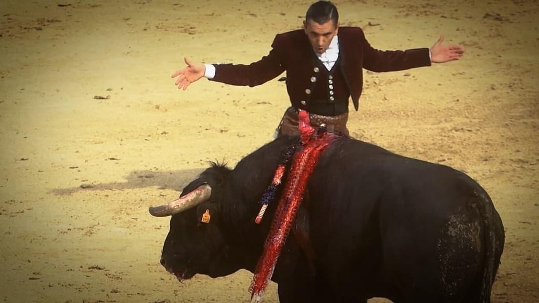 Wieder Stierkampf in Spanien: Tausende Madrilenen feiern