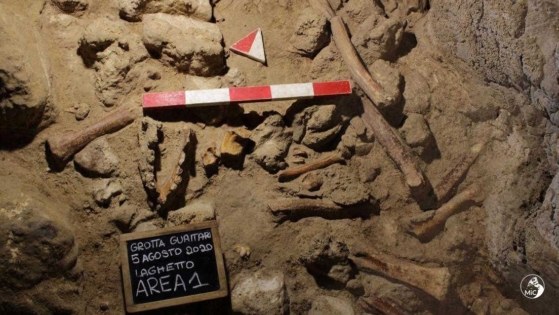 Neandertaler als Beute für Hyänen? – Spektakuläre Funde in italienischer Höhle