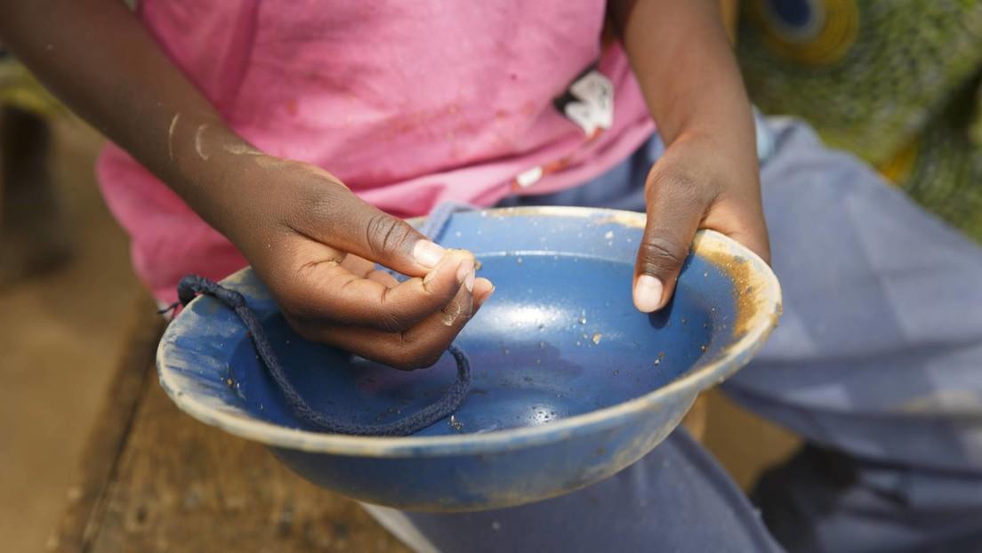 Mais und Weizen um mehr als die Hälfte teurer: In Schwellenländern drohen Unruhen