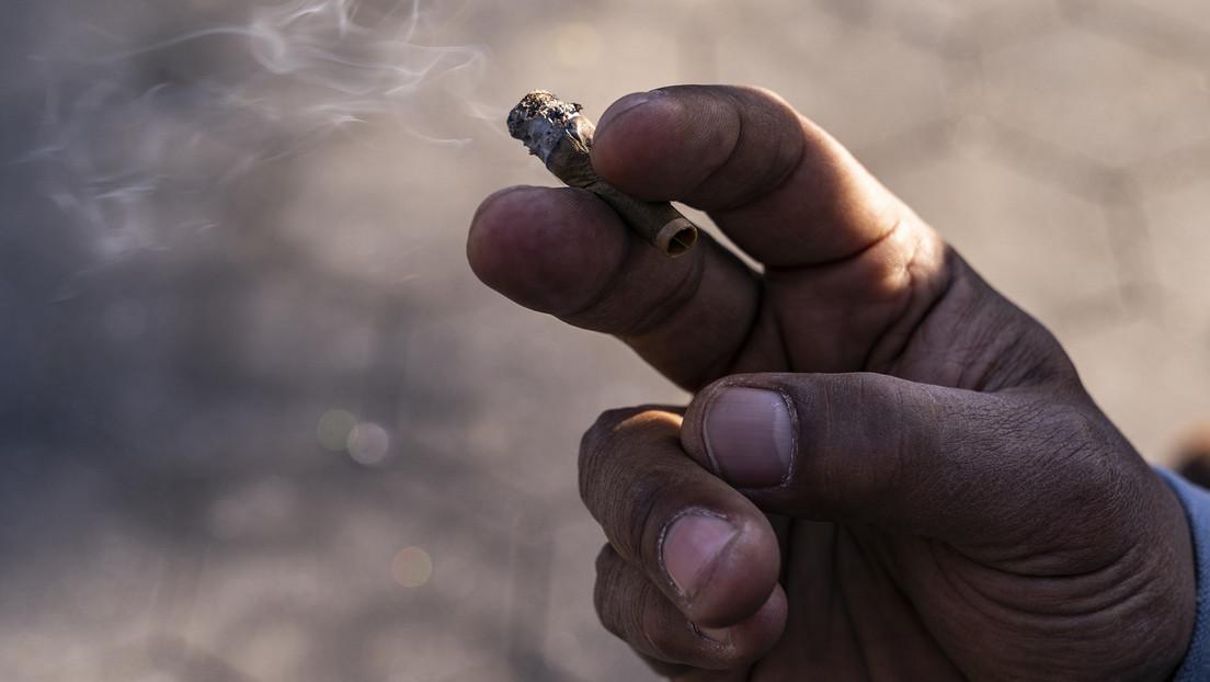 Frankfurt am Main als Türöffner für bundesweite Cannabis-Legalisierung?