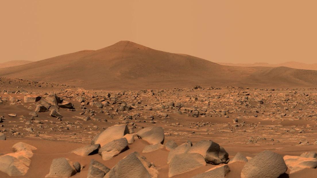 """Hat die NASA aus Versehen bereits """"per Anhalter"""" irdisches Leben auf den Mars gebracht?"""