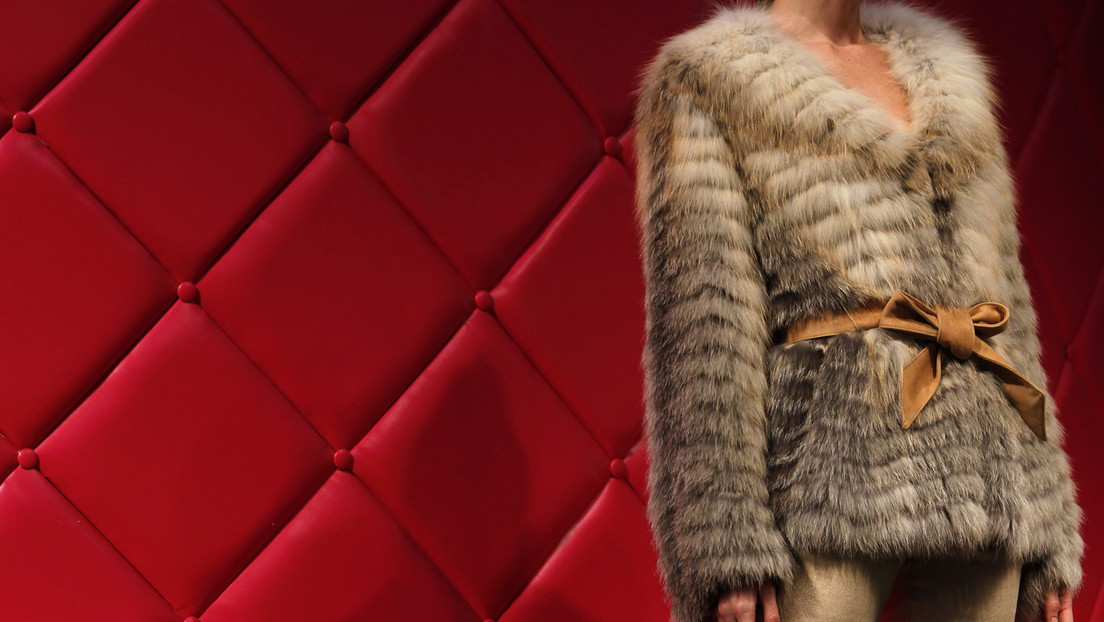 Als erstes Land weltweit: Israel verbietet Pelzverkauf an die Modebranche