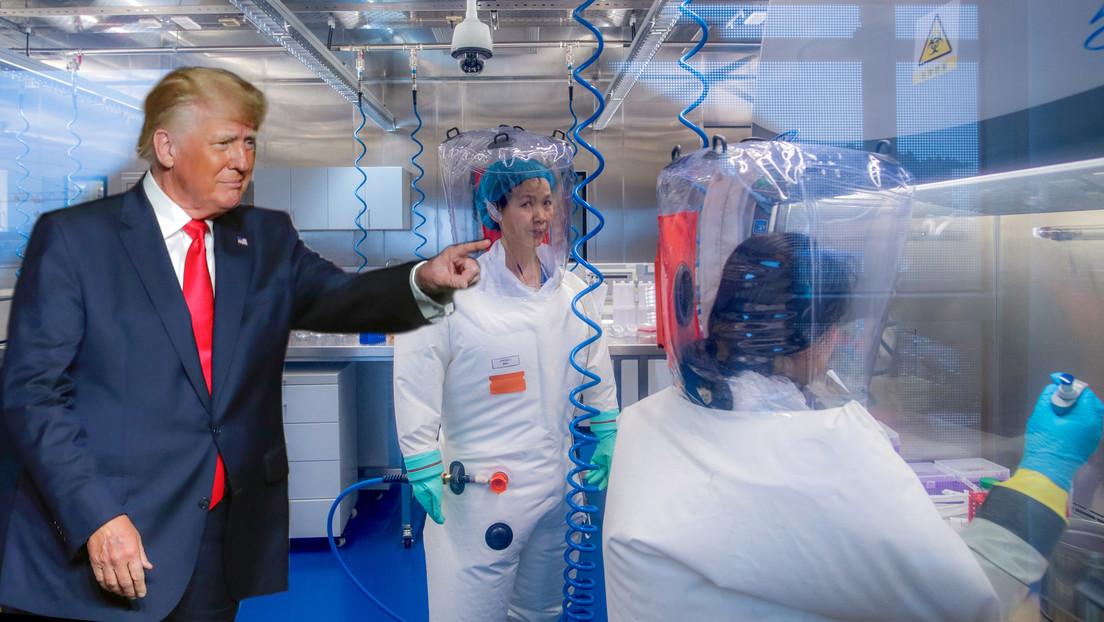 Wissenschaftlerin: COVID-19-Labor-Leck-Theorie war berechtigt, sollte aber Trump nicht unterstützen