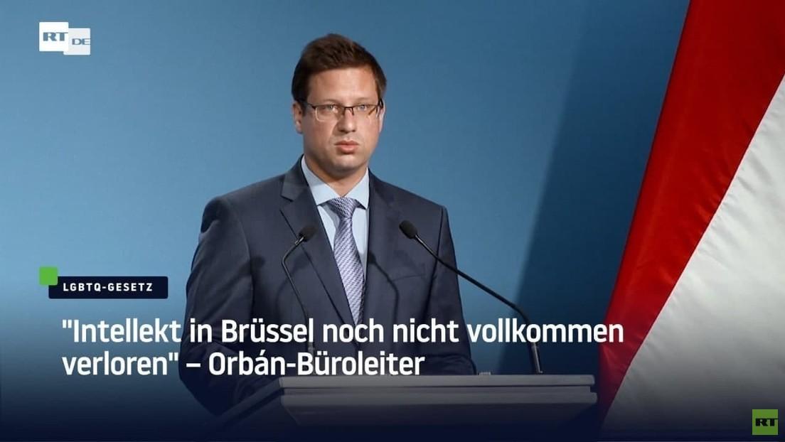 "Orbáns Büroleiter: ""Intellekt in Brüssel noch nicht vollkommen verloren"""