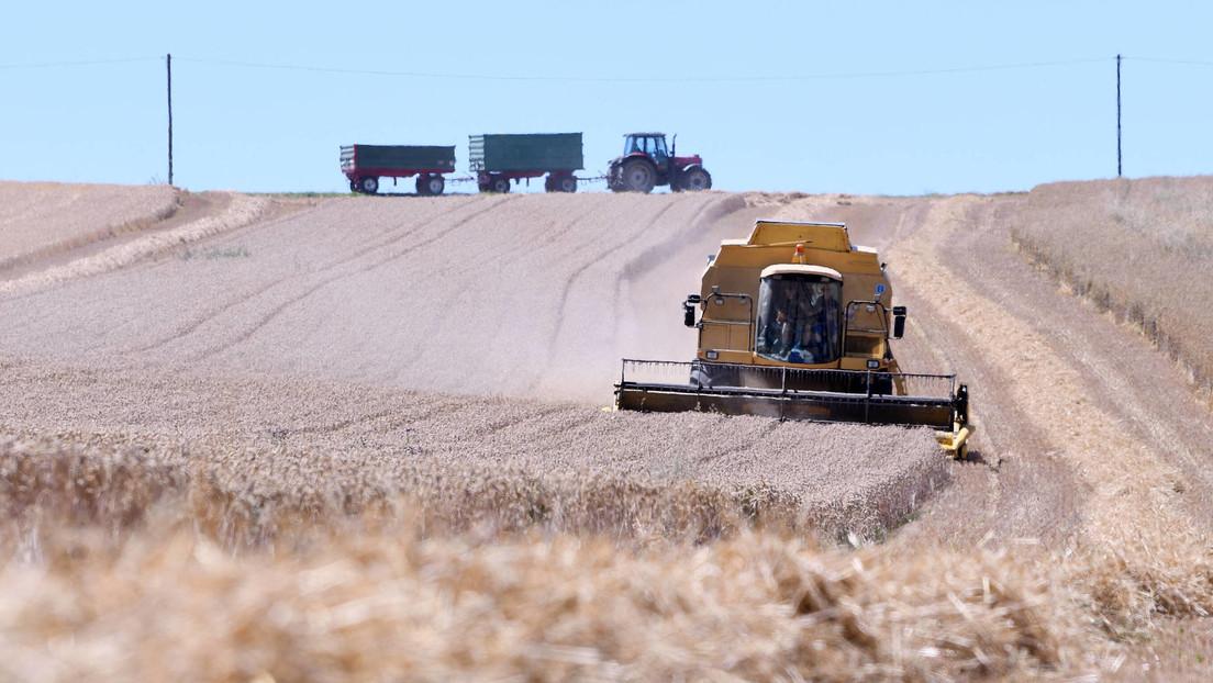 Zukunft der Landwirtschaft nicht ohne Nachhaltigkeit und höhere Preise