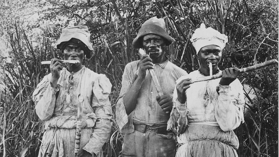 Sklaverei und Kolonialismus – Jamaika fordert Milliarden-Entschädigung von Großbritannien