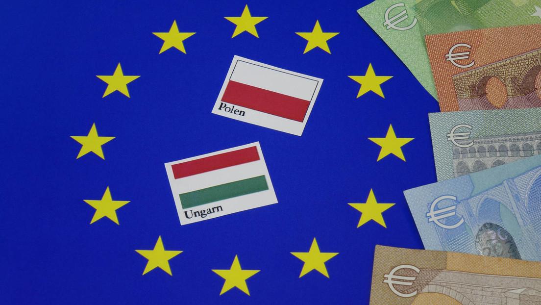 Vizepräsidentin des EU-Parlaments fordert Sperrung von EU-Geldern für Ungarn und Polen